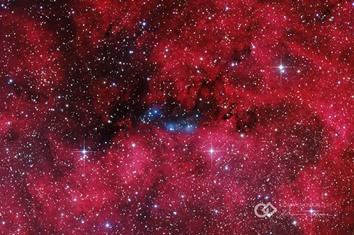 NGC 6914: Constellation of Cygnus